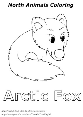 arctic fox coloring for kids