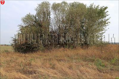 Первый найденный немецкий бункер у деревни Набережная