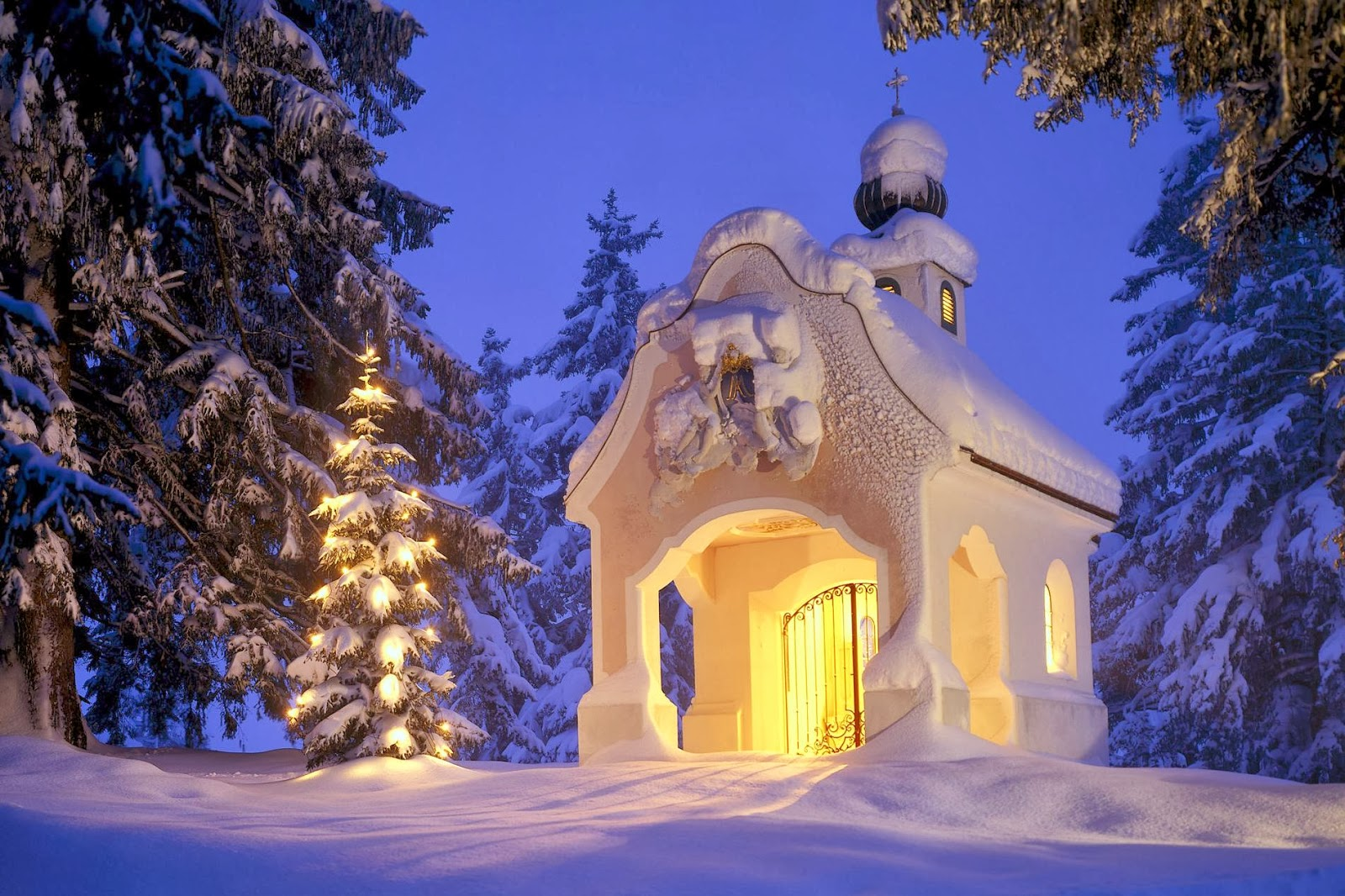 Rare collection of widescreen christmas wallpapers hd - Christmas nature wallpaper ...