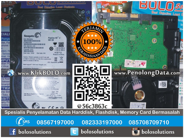Hasil Recovery Data Harddisk Internal Seagate 500GB Sarwo Edi Tuban