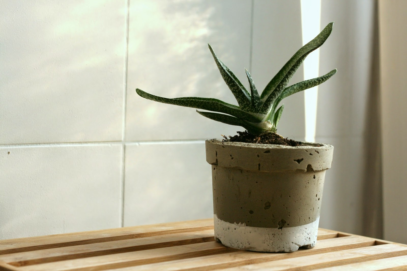 vida nullvier blumentopf aus beton. Black Bedroom Furniture Sets. Home Design Ideas