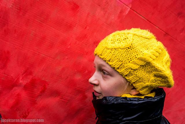 cala puszcza pod ochrona, krakow, puszcza bialowieska, protest
