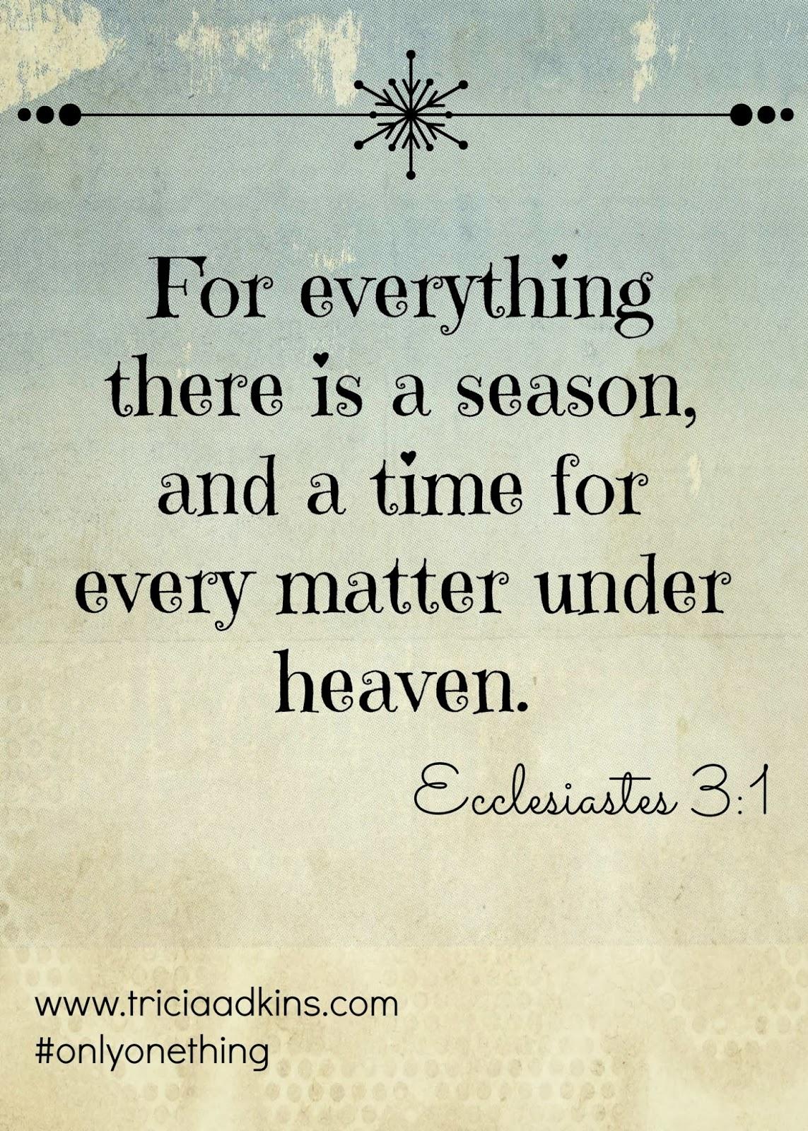 Yoke: Only One Thing Week 8: Ecclesiastes 3:1-8