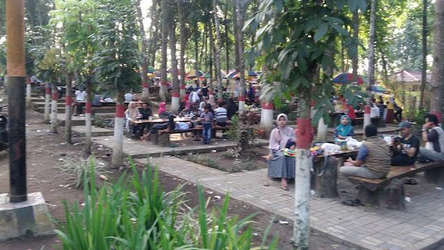 KEBUN RENTENG, Taman Sains dan Teknologi Kopi dan Kakao  wisata kebun keluarga Jember Jawa Timur