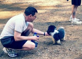 Cara Merawat Anjing Shih Tzu Yang Baik Agar Tetap Imut dan Sehat