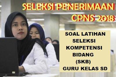 Soal SKB Tes CPNS Guru SD dan Kunci Jawabannya