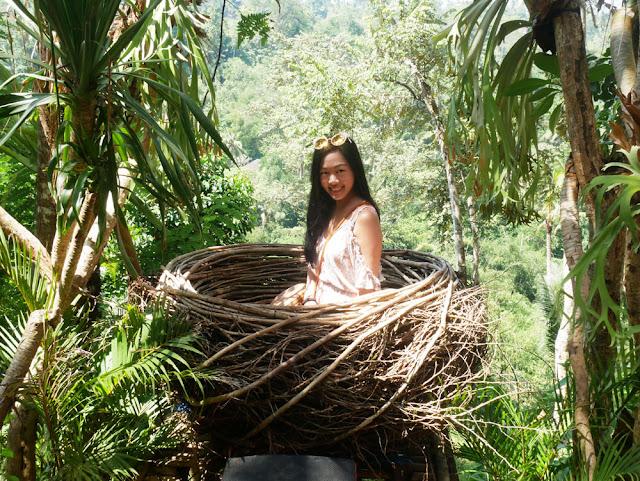 Bali Swing nest