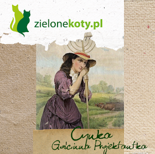 http://cynkowepoletko.blogspot.com/