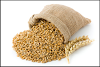Malt Makes a Comeback, Packing Powerful Nutritional Benefits