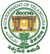 TS Vidya Volunteers Recruitment Notification 2018 Telangana 16781 VVs Online Application form