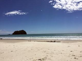 Manganui beach
