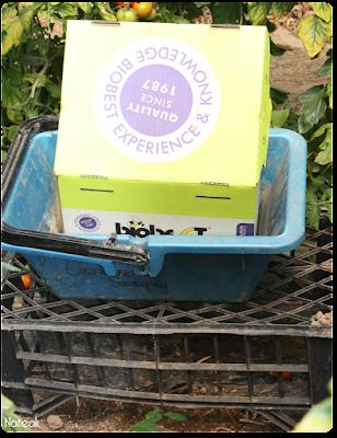 pollinisation par les bourdons  de la ferme de Servigny