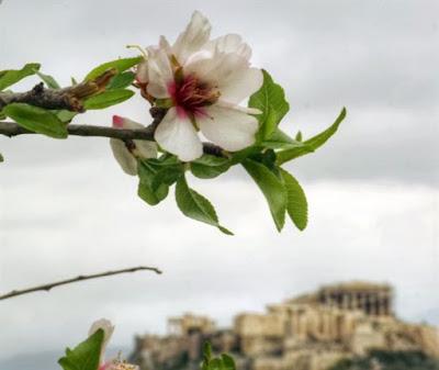 Μοναχός Μωϋσής Αγιορείτης: Η «Φιλοκαλία» και «Το αδιανόητο τίποτα». Εξηγήσεις υπερλόγων πραγμάτων (Βίντεο)