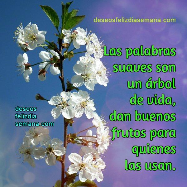 Frases De Saludos Para Amigos De Facebook Sitios Online
