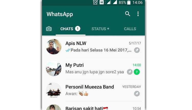 Update whatsapp menghadirkan fitur pinned chat