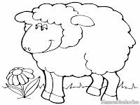 Download Gambar Domba Untuk Diwarnai