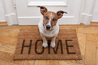Prescott Maid To Order house cleaning and pet sitting in your Prescott Home