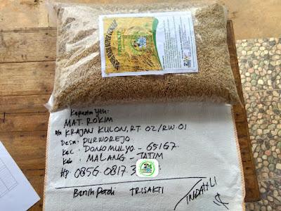 Benih pesanan MAT ROKHIM Malang, Jatim..   (Sebelum Packing)