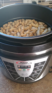 Boiled Peanuts in Pressure Cooker