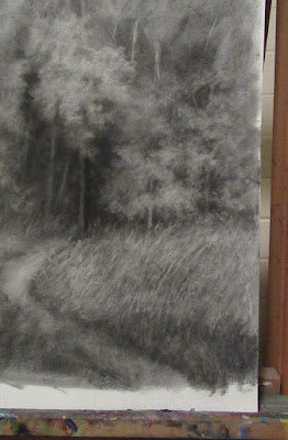 art drawing charcoal WIP detail forest nature tree
