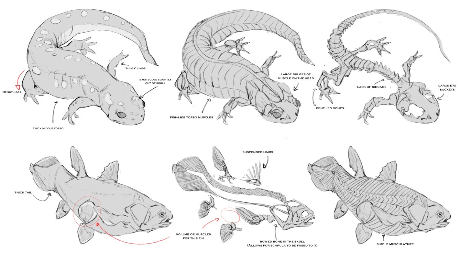 Terryl Whitlatch Creature Course #2 - Plethios
