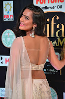 Prajna in Cream Choli transparent Saree Amazing Spicy Pics ~  Exclusive 008.JPG
