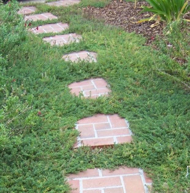 The 2 Minute Gardener Photo Brick Stepping Stone