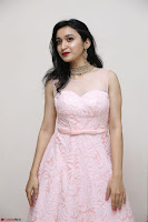 Sakshi Kakkar in beautiful light pink gown at Idem Deyyam music launch ~ Celebrities Exclusive Galleries 006.JPG