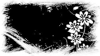 6 - Flores TR e branco 1 png