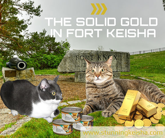 The Solid Gold in Fort Keisha