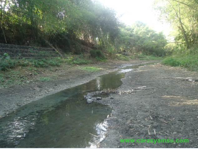 Sungai Jatinegara