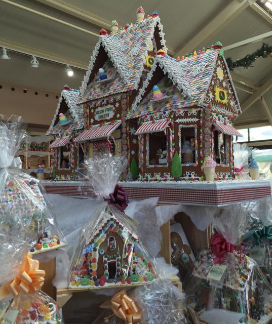 Christmas Lights Roof