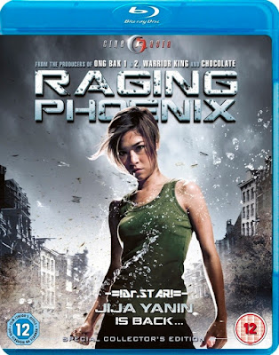 Raging Phoenix 2009 Hindi Dubbed BRRip 480p 300mb hollywood movie hindi dubbed 300mb 480p compressed small size free download or watch online at https://world4ufree.ws