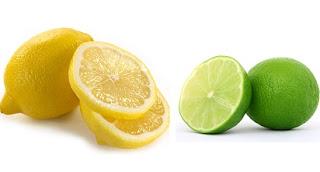 jeruk lemon untuk diet,perbedaan lemon dan jeruk nipis untuk diet,harga jeruk lemon,budidaya jeruk lemon,lemon dan manfaatnya,jeruk lemon untuk wajah,diet jeruk nipis 21 hari,manfaat jeruk nipis,