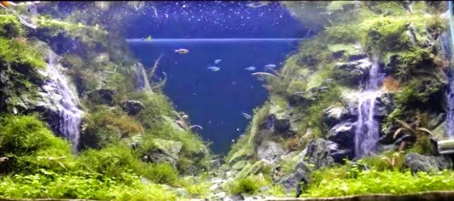 www.vinhaqua.com-ho-thuy-sinh-suoi-thac-7