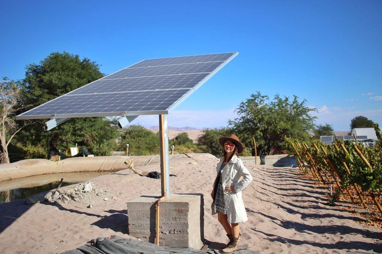 Paineis solares na Vinícola Santa Romina.