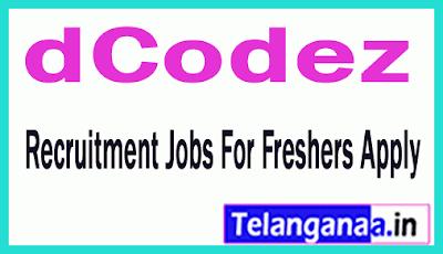 dCodez Recruitment Jobs For Freshers Apply