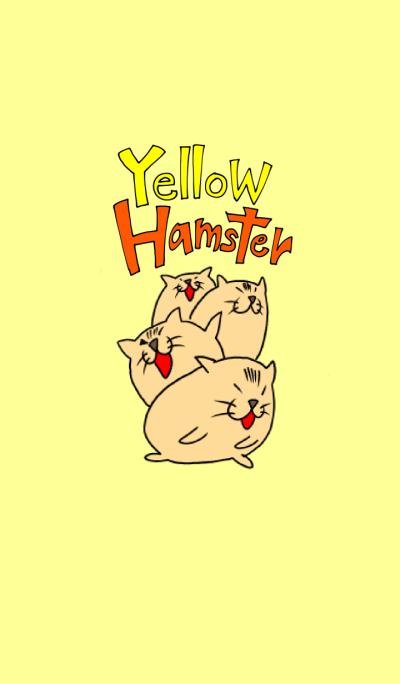 Yellow hamster