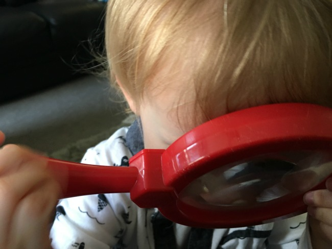 close up of toddler with magnifying glass