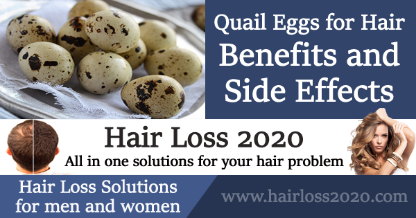 Quail Eggs for Hair with Benefits and Side Effects