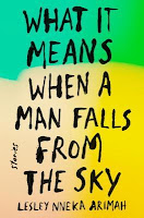 What It Means When a Man Falls from the Sky: Stories, Lesley Nneka Arimah, InToriLex