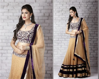 Top-indian-designer-choli-and-bridal-lehenga-blouse-designs-2016-17-16