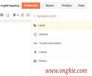 Setelan Entri Blogger