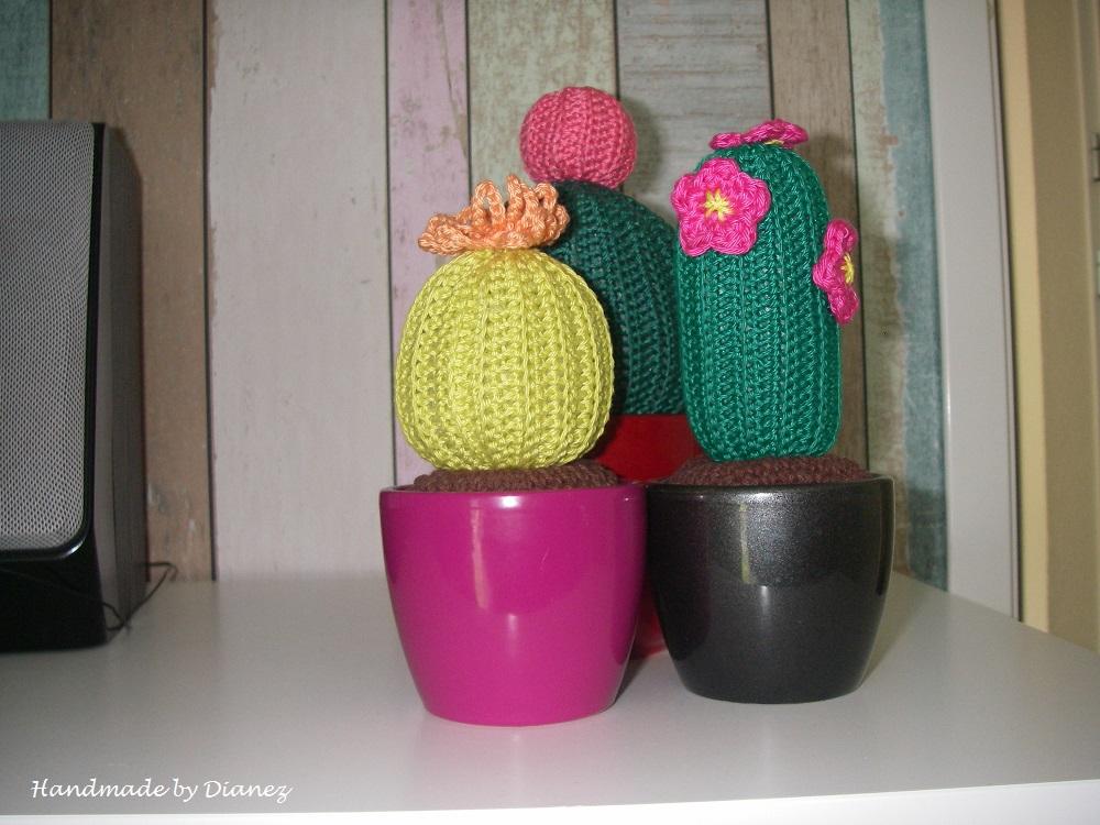 Handmade By Dianez Labeldoekjes Slab Sticker Cactussen En Haken