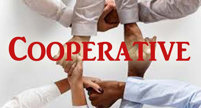 essay on cooperative movement in india, ,co-operative bank,co-operative society,co-operative department rajasthan,co-operative meaning,c co op bank ,c co op,,Banking, general knowledge,movement