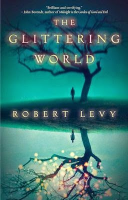 Interview with Robert Levy, author of The Glittering World, and Review - February 13, 2015