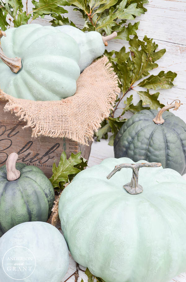 Click to find out how to make chalk painted pumpkins look realistic.  |  www.andersonandgrant.com