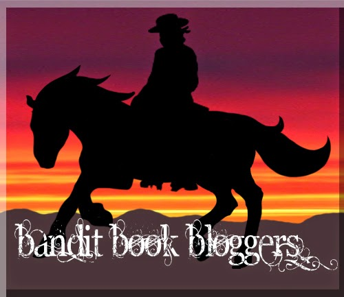 Bandit Book Bloggers