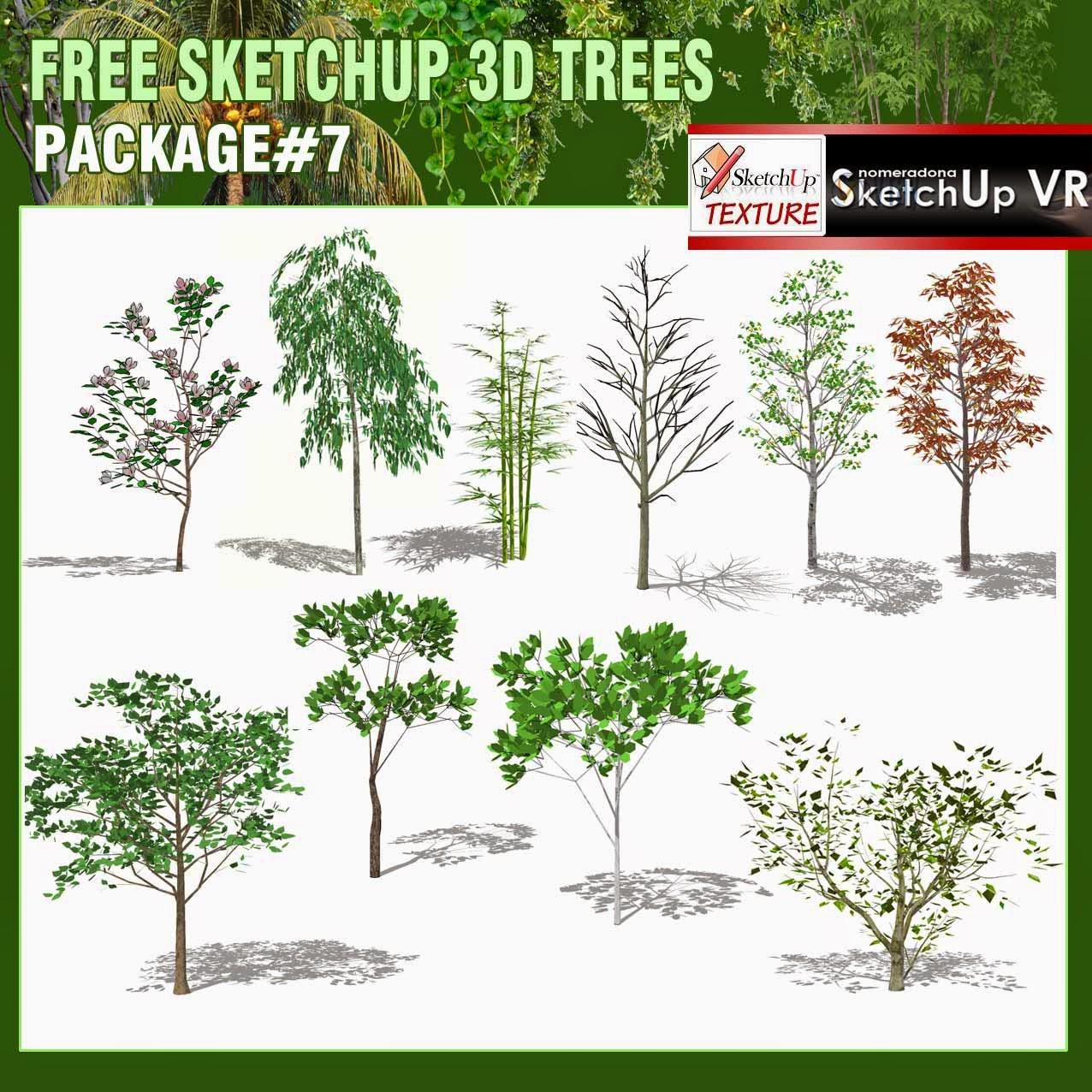 Free Sketchup 3d Trees Package 7