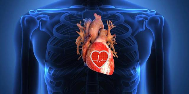 Cara Mendeteksi Detak Jantung Menggunakan Android